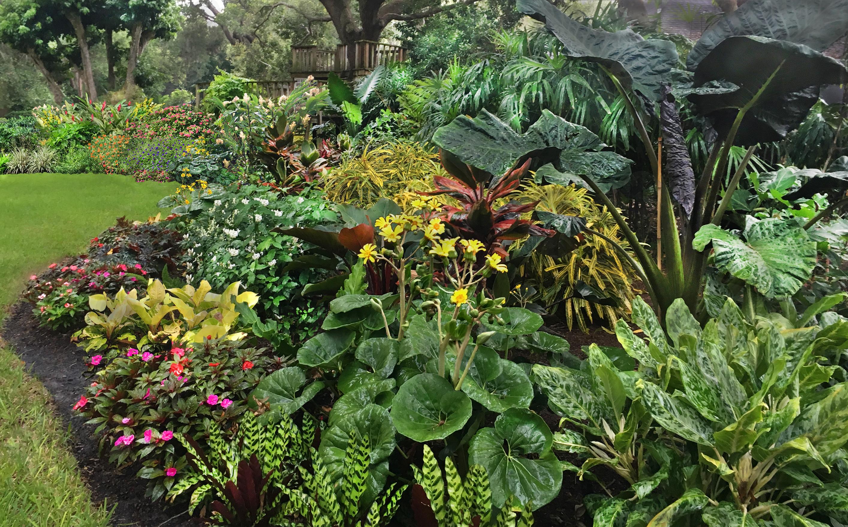 Image result for botanical solutions